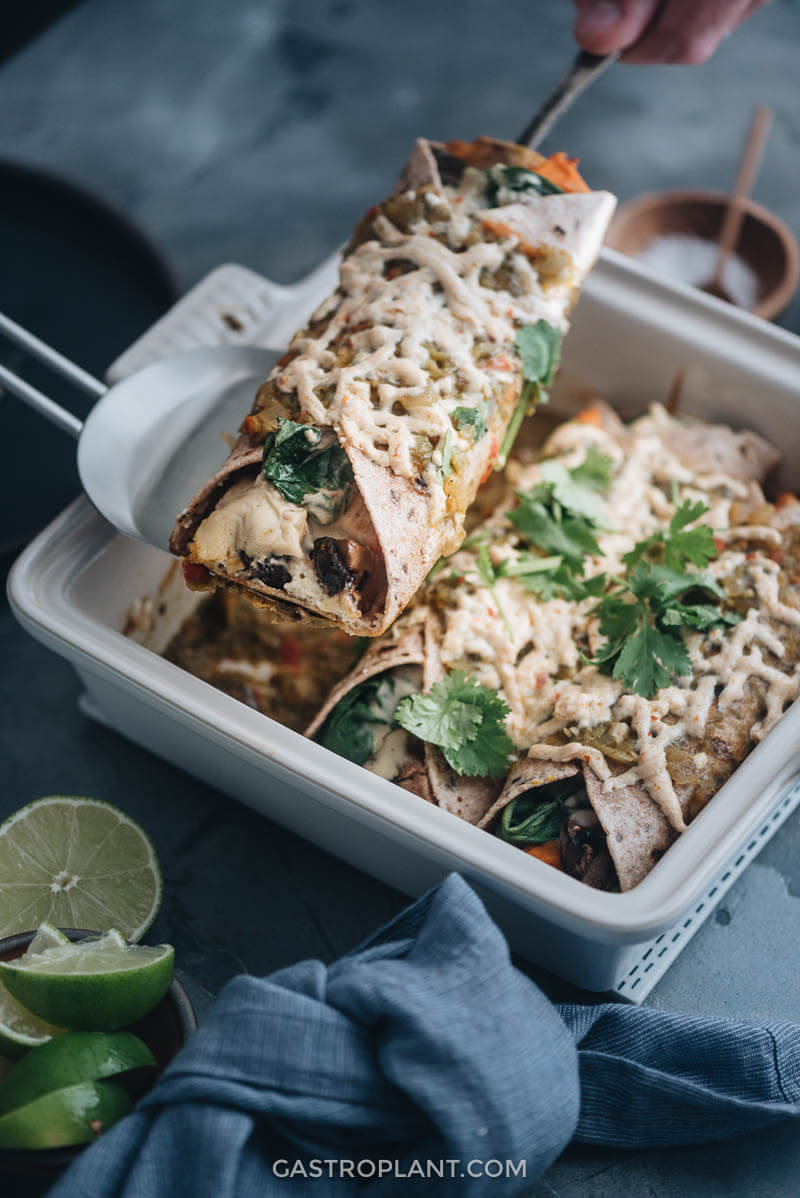 Vegan Enchiladas from Gastroplant